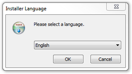 Picture 1: The language selection